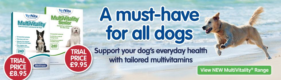 New tailored multivitamins for dogs